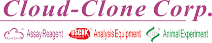 cloud clone logo